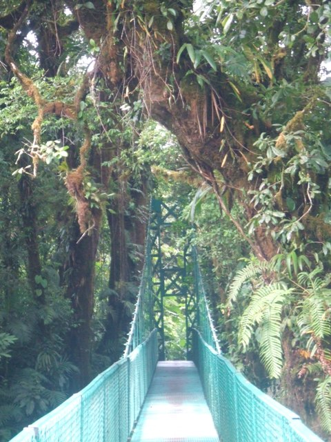 Suspension walkway, Salvatura, Guanacaste