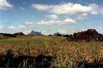 Inland Mauritius