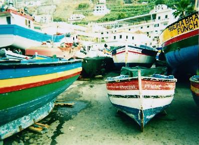 Fishing boats, Madeira